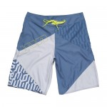 Ion Boardshorts Eclectic China Blue